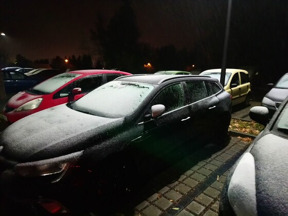 Die ersten Schneeflocken